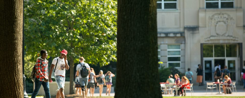 Students walk across the Ag Quad in fall.